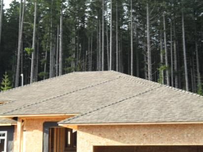 Timberline Roofing, laminate, IKO, Malarkey, shingles, roofing, courtenay, campbell river, Parksville